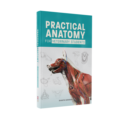 PRACTICAL ANATOMY FOR VETERINARY STUDENTS